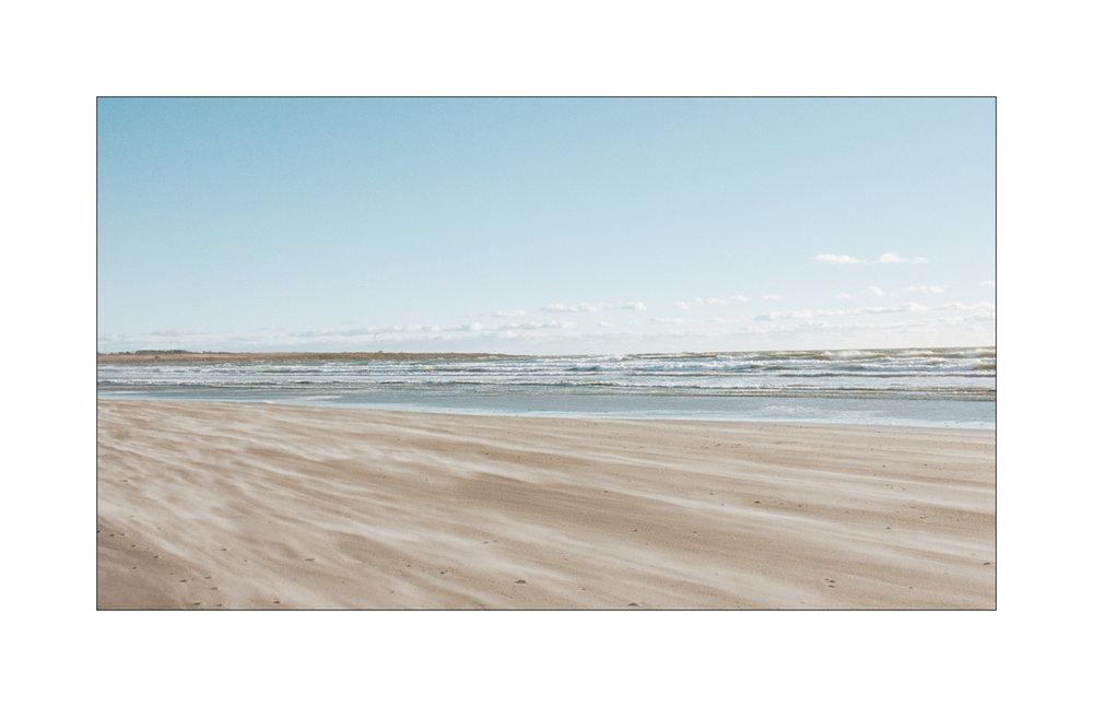 Louis Sousa | Windswept | Nikon F6 | 35mm F1.8 | Kodak Portra 400