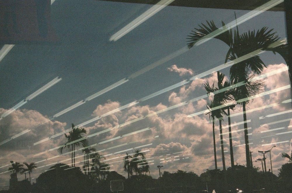 Franco Carino Zanotti | Miami | Minolta SRT 101b