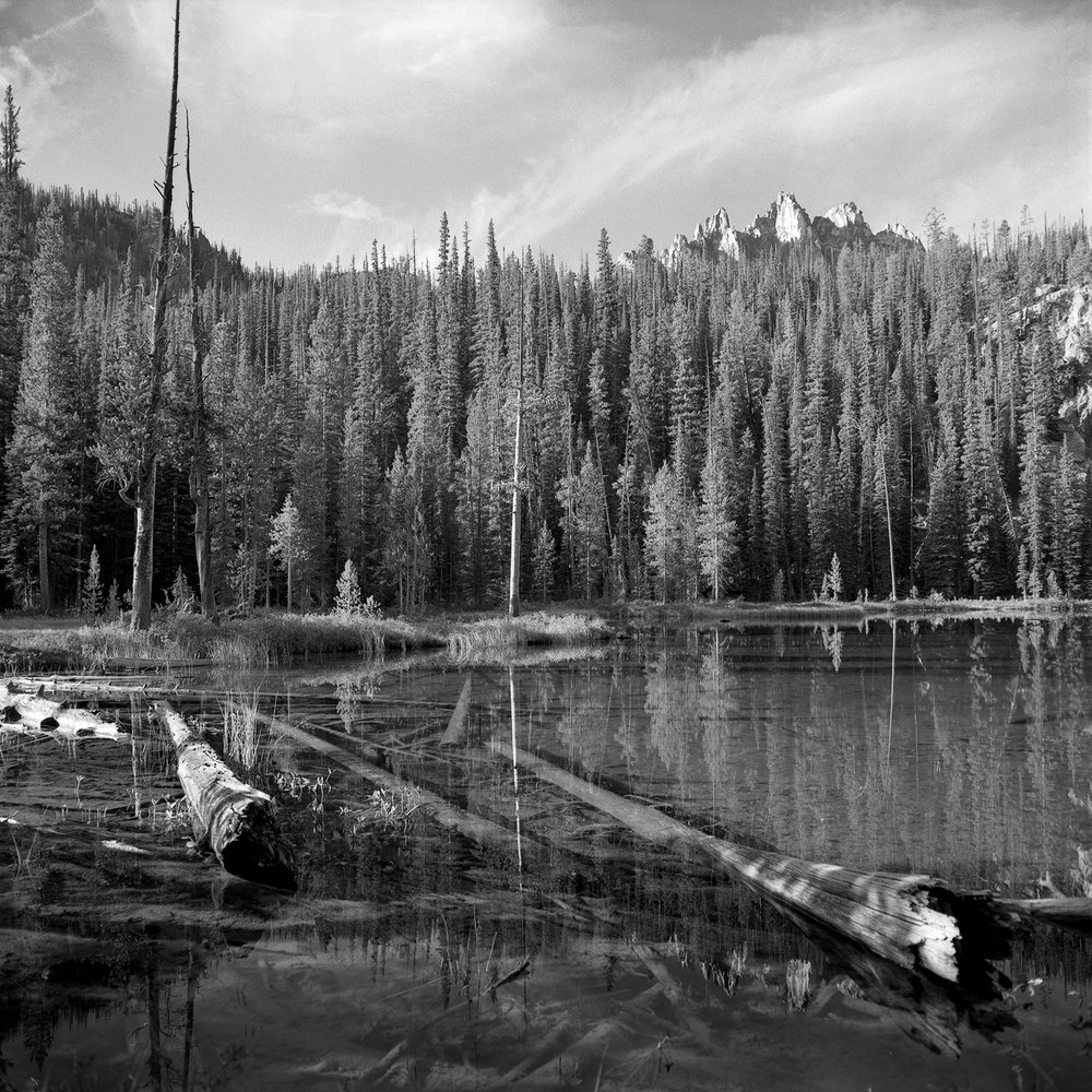 Morning at Bench Lake #3 |   Rolleiflex FW, Ilford FP4 plus