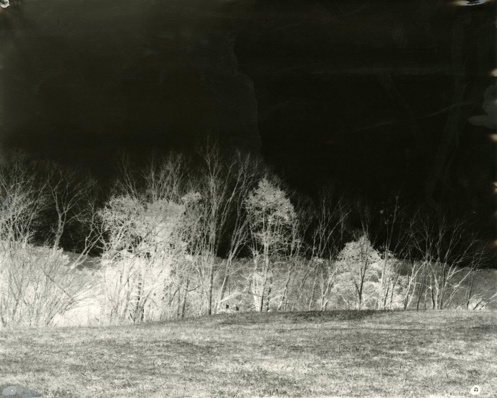 4_Landscape.jpg
