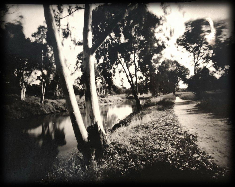 Daphne Schnitzer | Atget at the riverbank | Sténop'Amy | 4x5 pinhole camera