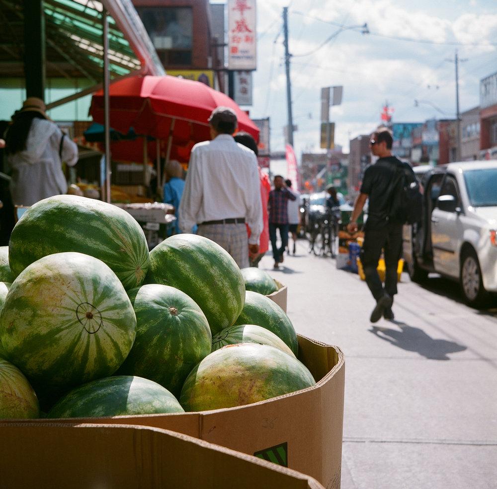 Andrew Gammell | Watermelon watermelon | Flexaret V | Fuji Reala 100