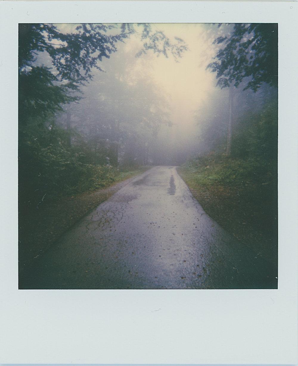 Foggy Road | Polaroid 600 | Josip Sore