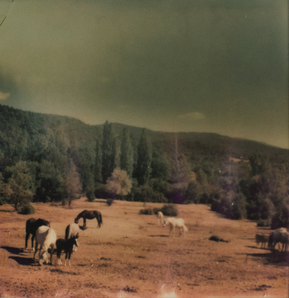 Chatillon | Polaroid SX70 | Polaroid Originals 70 Color | Jean Francois Flamey