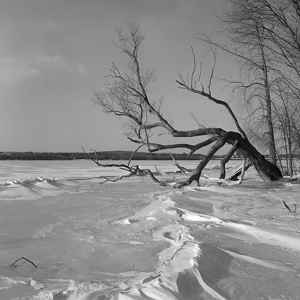 Howard Sandler | Frozen river | Ricoh Diacord | Delta 400
