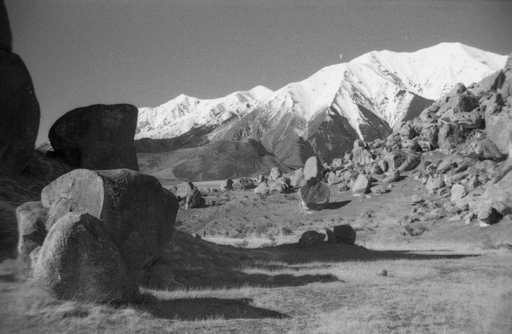 Kali Herdman | Castle Hill  | Spotmatic | Kodak Tri-X