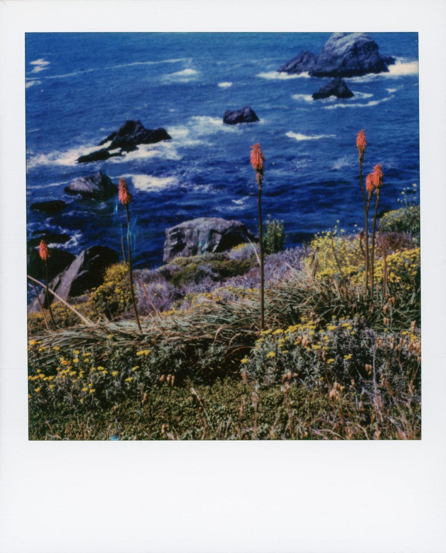 California Dreams | Polaroid SLR680 | Polaroid Originals 600 | Brad Stein