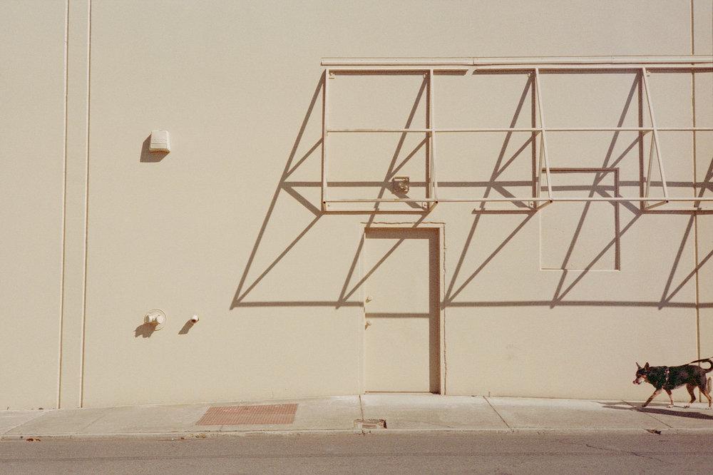 Untitled | Canon 7 | Expired Ferrania Solaris 200 | Colton Allen