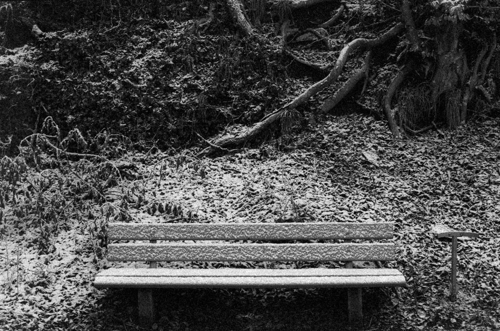 Daniel Stoessel | Empty | Nikon F-100