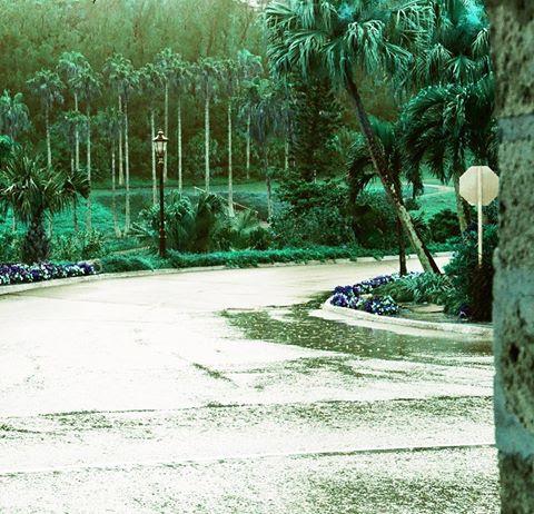 Bermuda Rain | Nikon FE | Lomochrome Turquoise | Barbara Murray