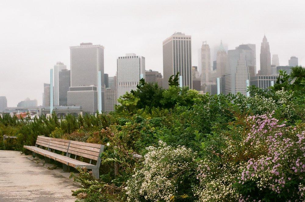 Cityscape | Madison Thain