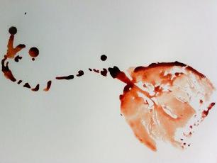 placenta 19.JPG