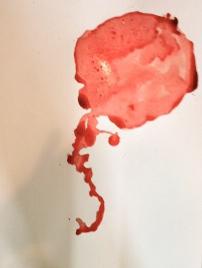 placenta 23.JPG