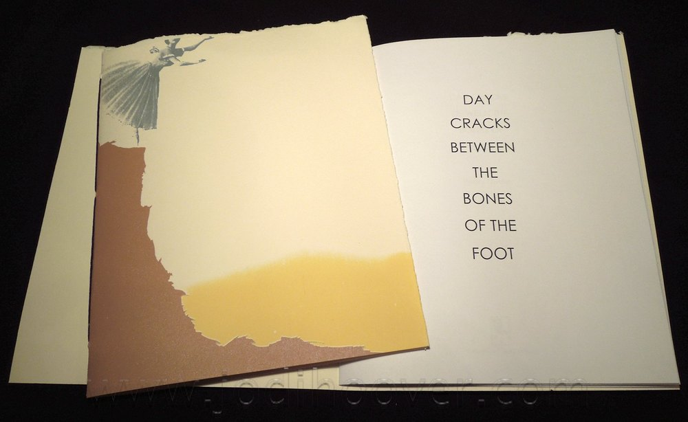 Day Cracks Between the Bones of the Foot, 2013