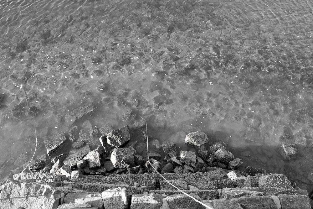 dock_water.jpg