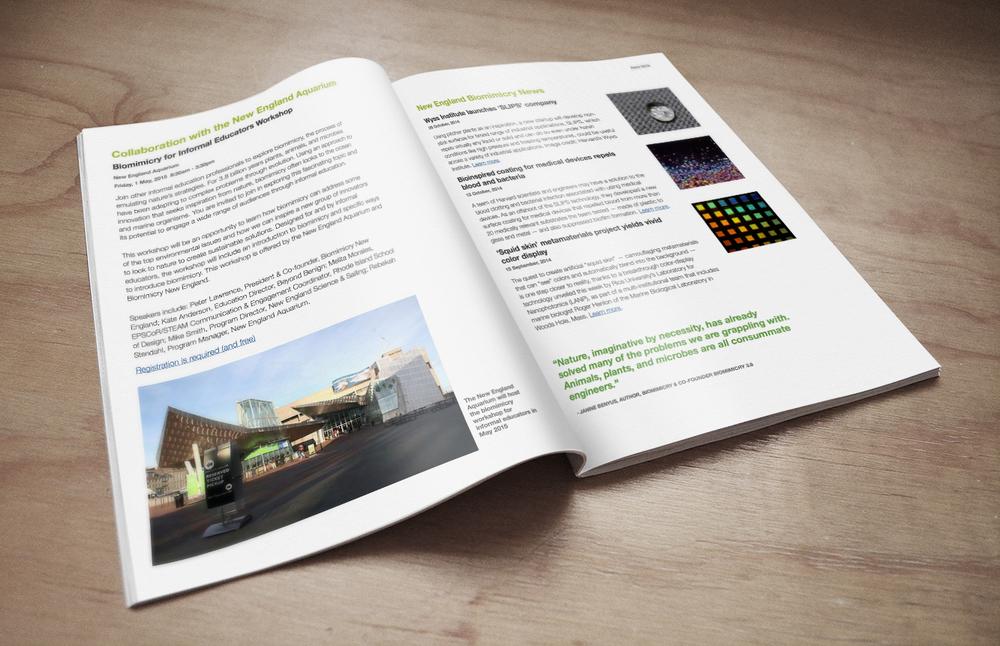 Magazine Mockup_Biomimicry.jpg