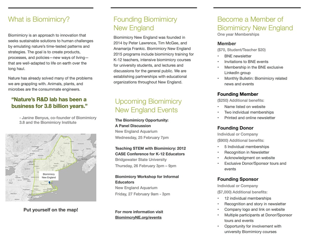 Biomimicry NE brochure page .jpg