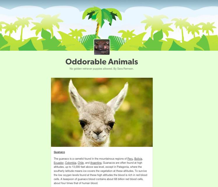 Oddorable Animals Blog