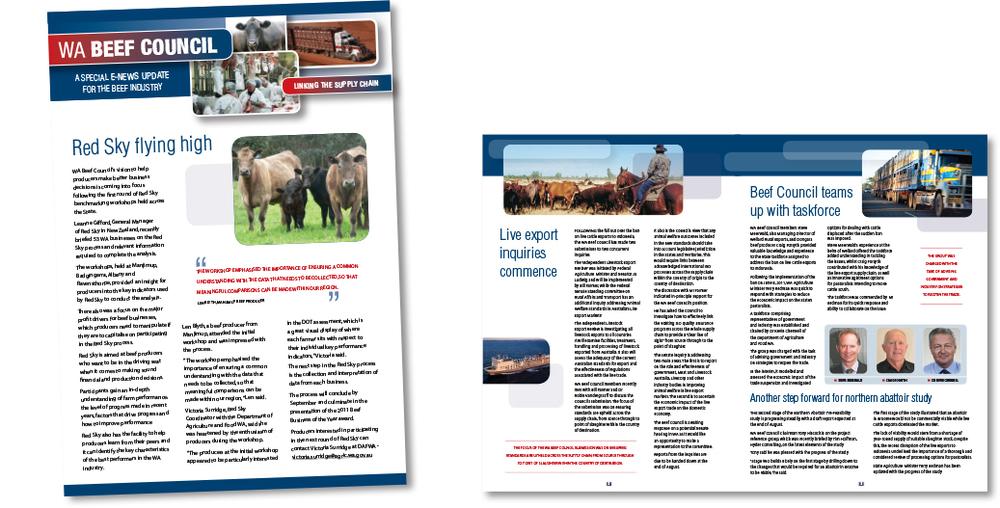 WA-Beef-Council-newslttr.jpg