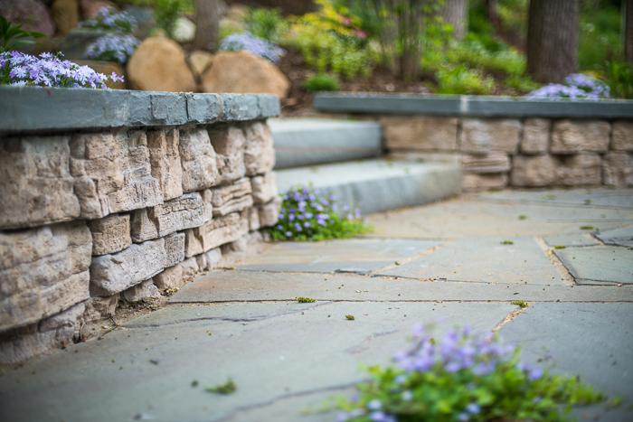 DSC_0098 - ann arbor photographer lotus garden.jpg