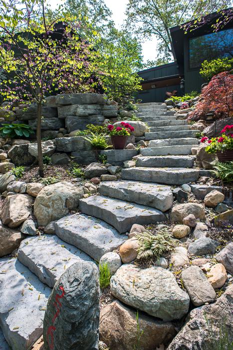 DSC_0214 - ann arbor photographer lotus garden.jpg