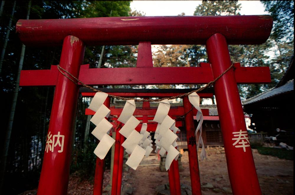 japan-021.jpg