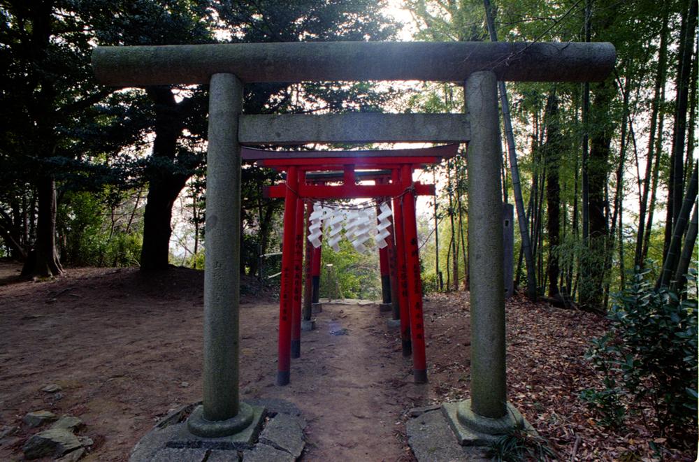 japan-020.jpg
