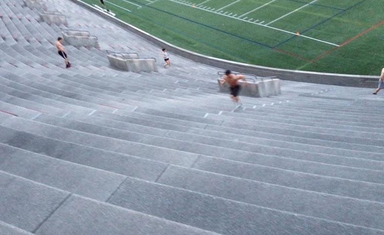BEAST stadium 2.jpg