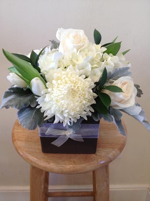 Elegant in White - $75