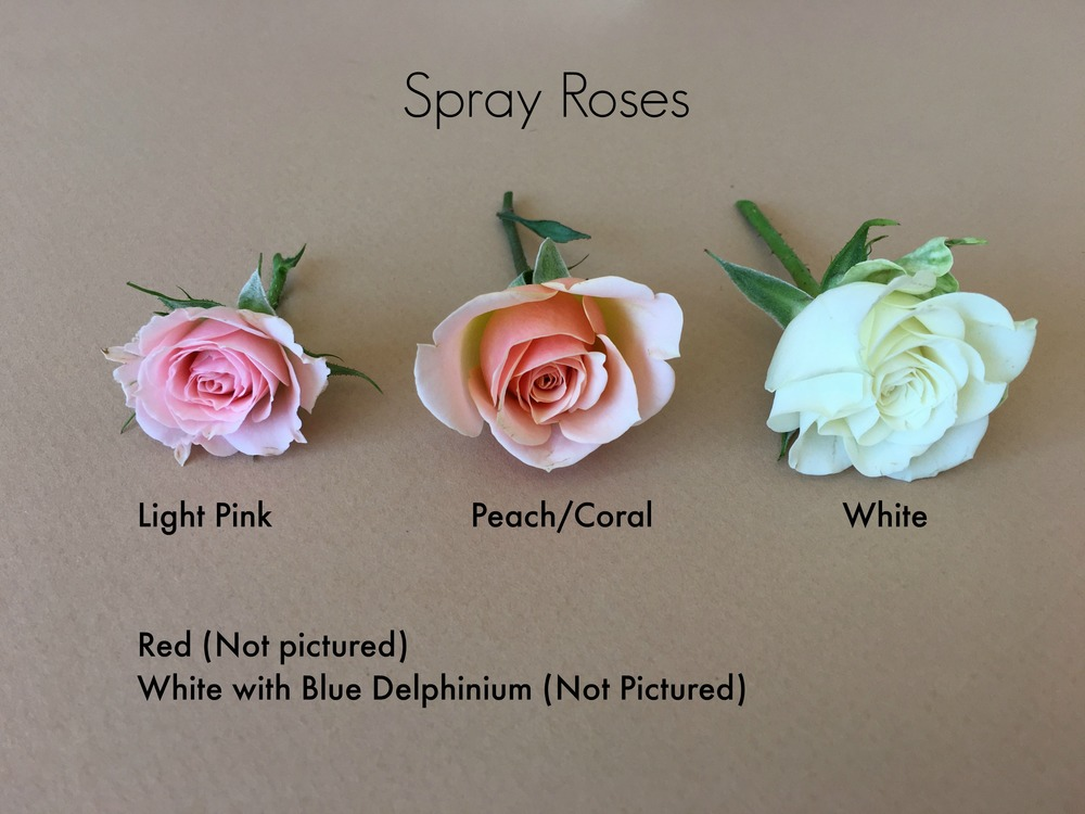 sprayroses.jpg