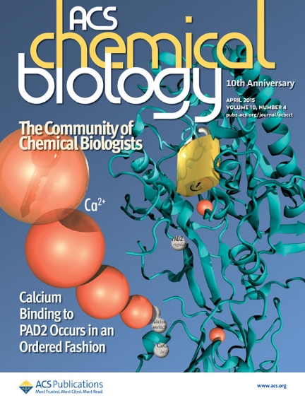 Protein arginine deiminase 2 binds calcium in an ordered fashion: implications for inhibitor design. Slade DJ, Fang P, Dreyton CJ, Zhang Y, Fuhrmann J, Rempel D, Bax BD, Coonrod SA, Lewis HD, Guo M, Gross ML, Thompson PR. ACS Chem Biol. 2015 Apr 17;10(4):1043-53.