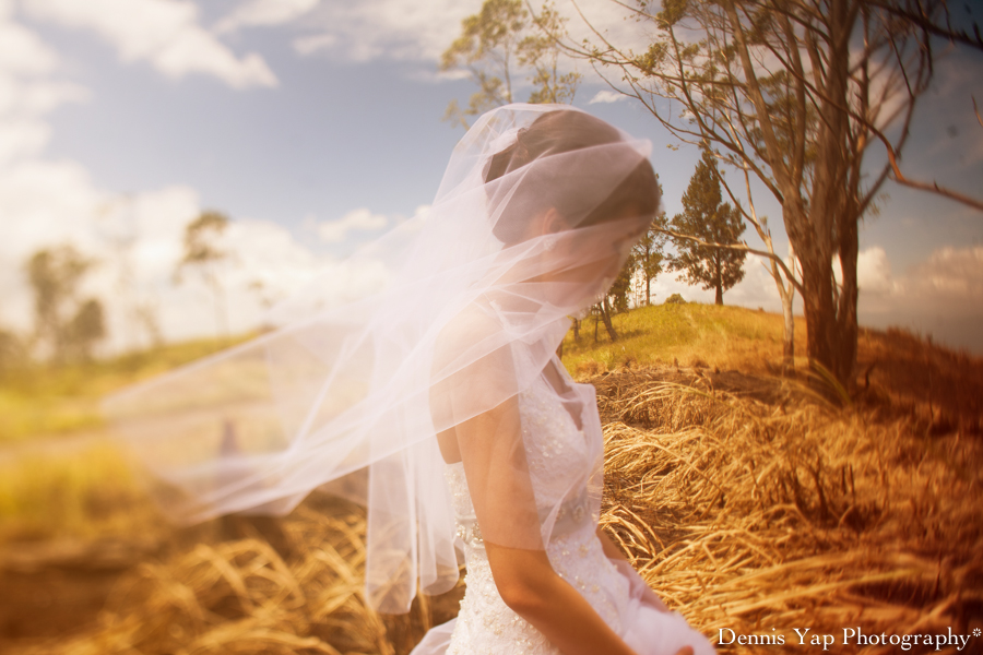 Dylan Jennifer Kundasang Dairy Farm Dennis Yap Photography Pre Wedding Keith Kee-5.jpg