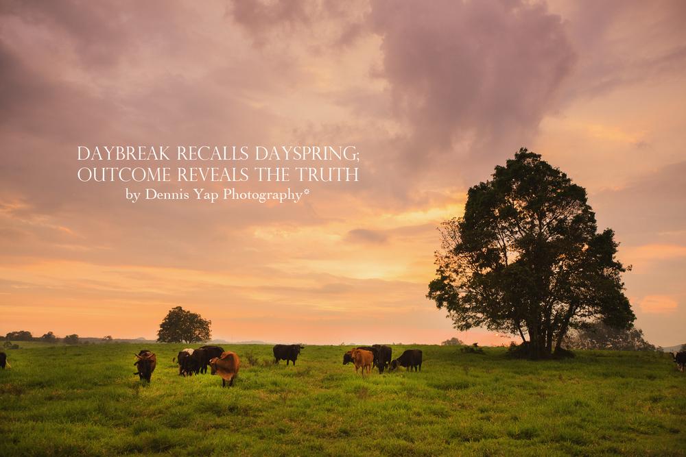 Daybreak recalls dayspring...