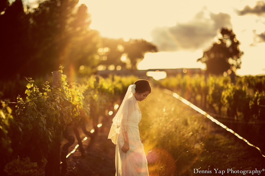 tsen angel pre wedding perth vinyard dennis yap photography kings park-10.jpg
