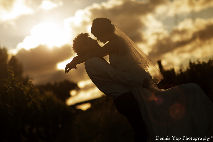 tsen angel pre wedding perth vinyard dennis yap photography kings park-7.jpg