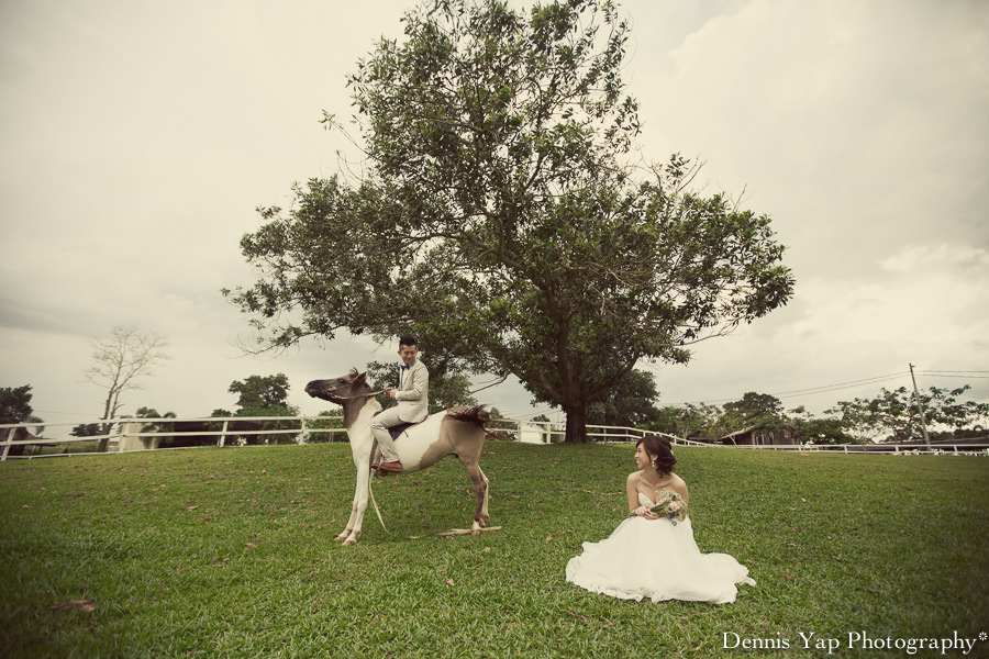 yong bin lidya with you eternally pre wedding uk farm johor kluang dennis yap photography lavendar farm goat farm-6.jpg