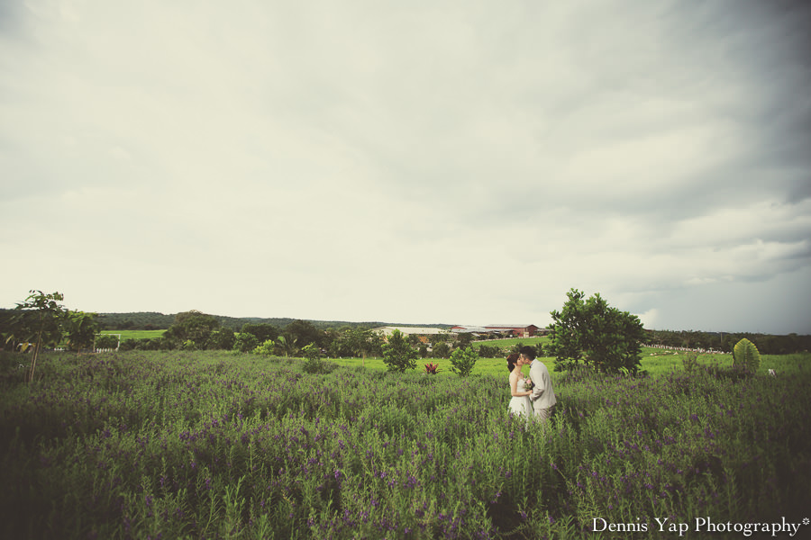 yong bin lidya with you eternally pre wedding uk farm johor kluang dennis yap photography lavendar farm goat farm-9.jpg
