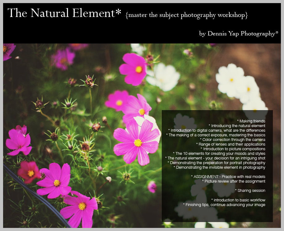 The+Natural+Element+n4.jpg