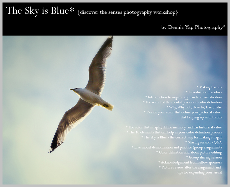 The+Sky+is+blue+Dennis+Yap+Photography+Workshop+about+colors.jpg