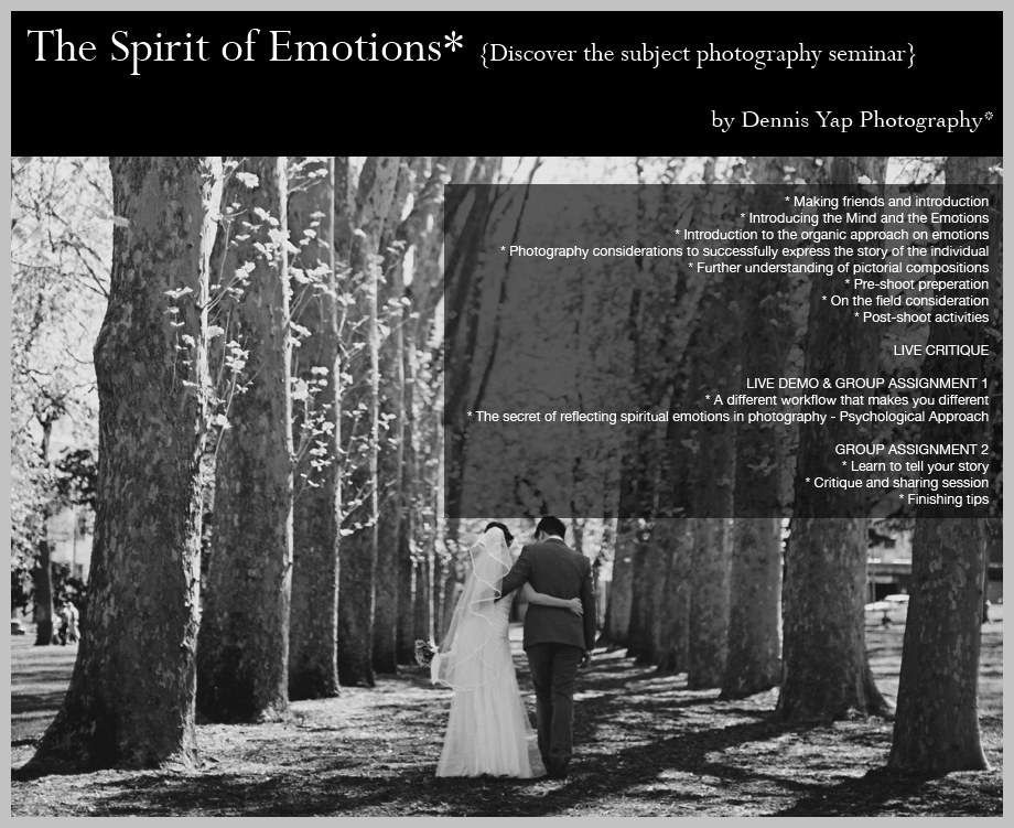 The+Spirit+of+Emotions+n2.jpg