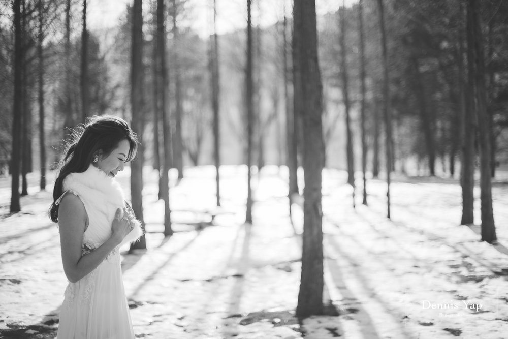 lewis teresa pre wedding winter theme seoul korea by dennis yap photography nami island-3.jpg