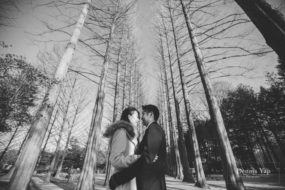 lewis teresa pre wedding winter theme seoul korea by dennis yap photography nami island-11.jpg