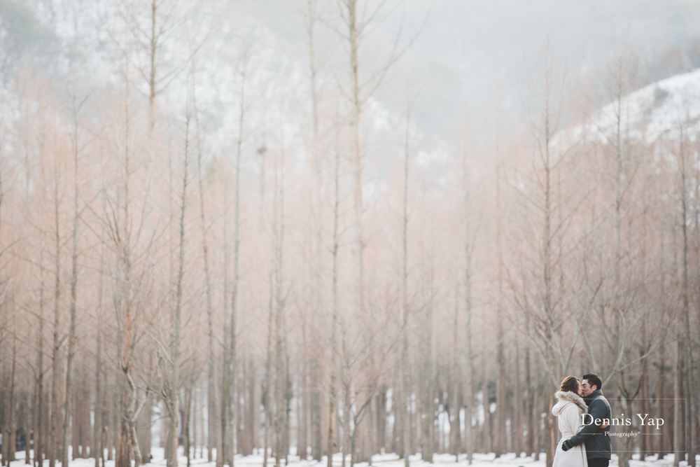 lewis teresa pre wedding winter theme seoul korea by dennis yap photography nami island-15.jpg