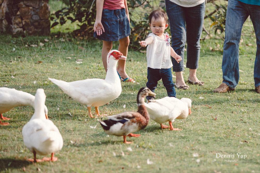 derek tien li family portrait setia eco park dennis yap photography-11.jpg