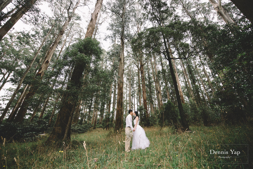 vincent sarah pre wedding dangdenong forest melbourne beloved dennis yap photography malaysia top photographer0080Vincent & Sarah-13.jpg