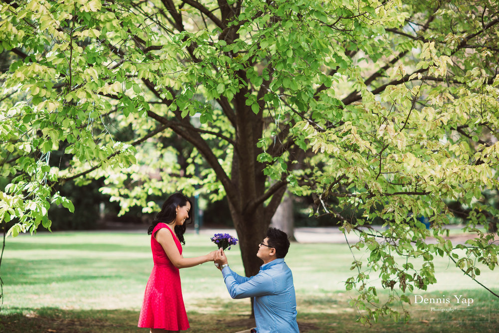 mu zhou karmun pre wedding melbourne north dennis yap photography-5.jpg