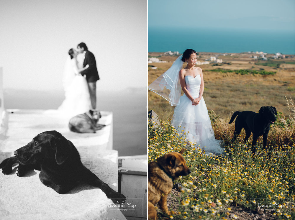 paul vanessa pre wedding santorini greece blue dog when i say i do dennis yap photography europe tour-25.jpg