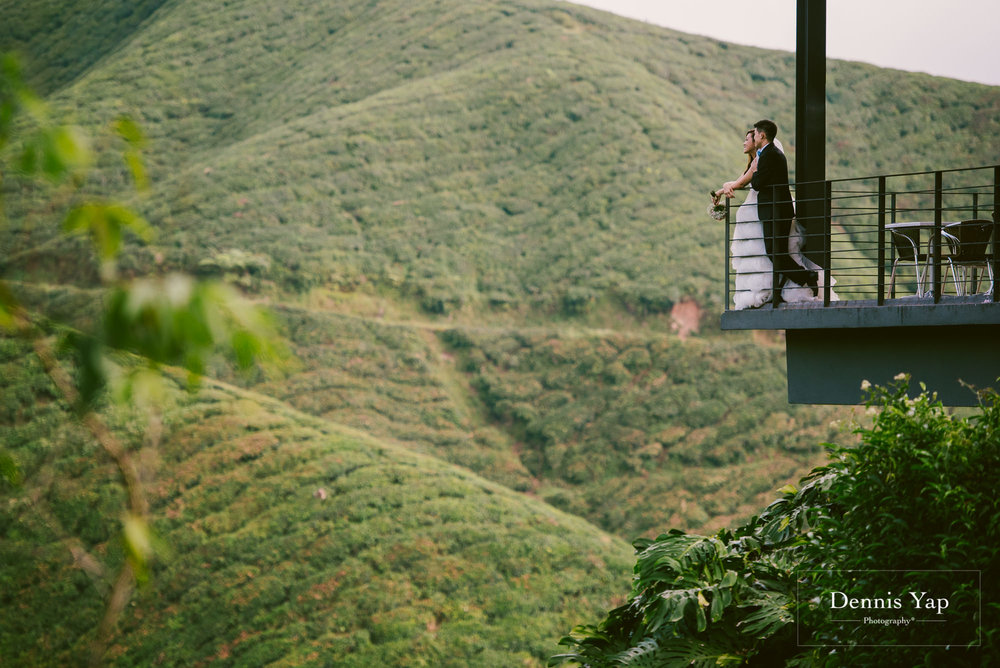 chay xiang alicia pre wedding cameron highland smoke house tea plantation dennis yap photography-5.jpg