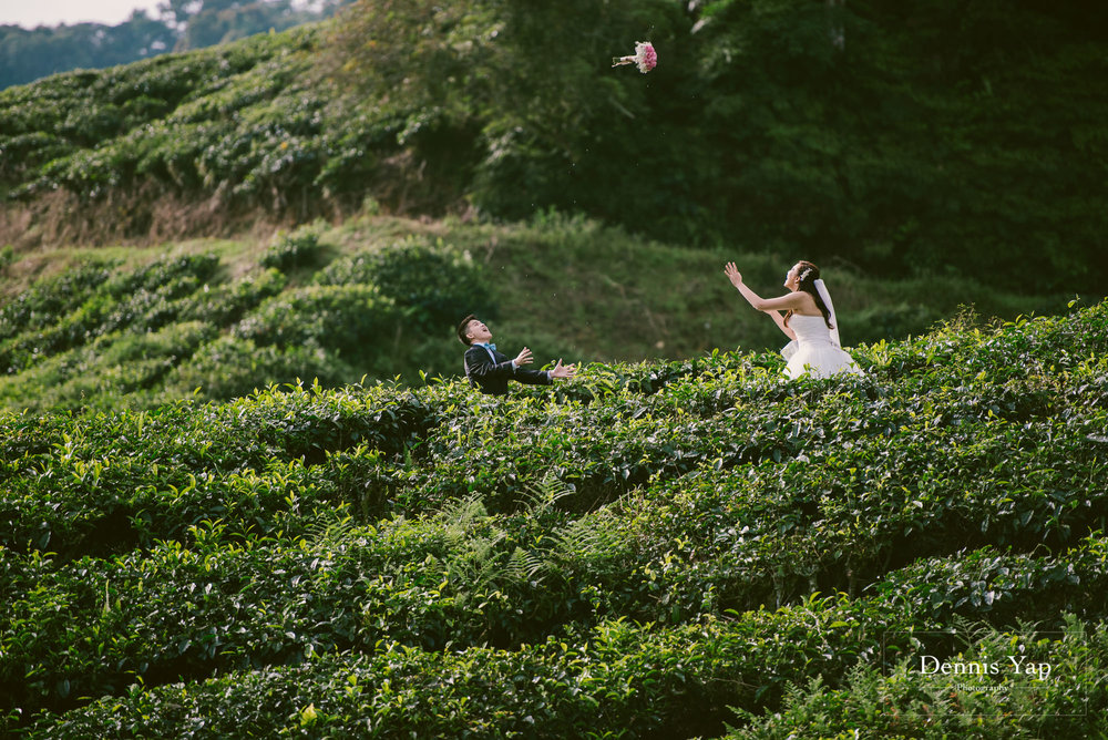 chay xiang alicia pre wedding cameron highland smoke house tea plantation dennis yap photography-7.jpg