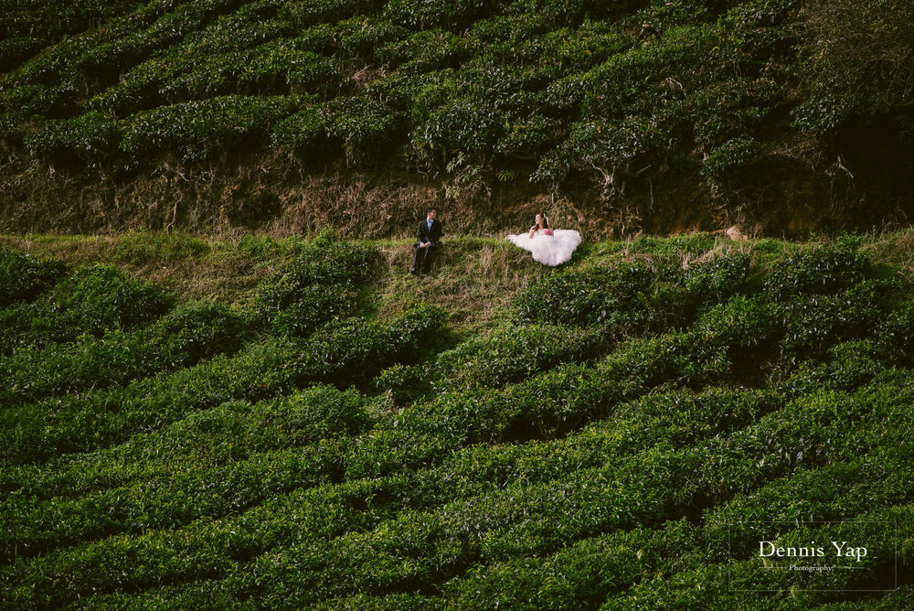 chay xiang alicia pre wedding cameron highland smoke house tea plantation dennis yap photography-8.jpg